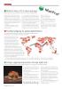 A Kraftig nedgang for global kjøttindustri
