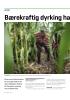 Bærekraftig dyrking har firedoblet avlingene