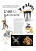 DYRISK I DANMARK