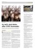 Nytt tilfelle av afrikansk svinepest i Tyskland