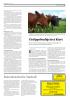 Skogeierforbundet kritiserer EUs nye skogstrategi