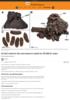 Et helt rottereir ble oversvømt av asfalt for 50 000 år siden