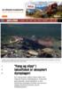 """""""Fang og slipp"""" i laksefisket er akseptert dyreplageri"""