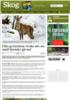Flått og borreliose vil øke selv om antall hjortedyr går ned