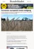 Forventer europeisk hvete-nedgang