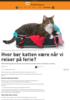 Hvor bør katten være når vi reiser på ferie?