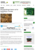 Klimaendringer baner vei for barkbillene i Europa