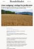 Liten nedgang i utslipp fra jordbruket