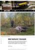 Med løshund i Karasjok