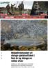 Miljødirektoratet vil stenge sjølaksefisket i fem år og stenge en rekke elver