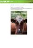 Rapport om husdyrgjødsel til biogass