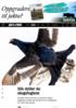 Slik skiller du skogsfuglene