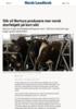 Slik vil Nortura produsere mer norsk storfekjøtt på kort sikt