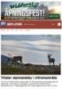 Tillater alpinlandsby i villreinområde